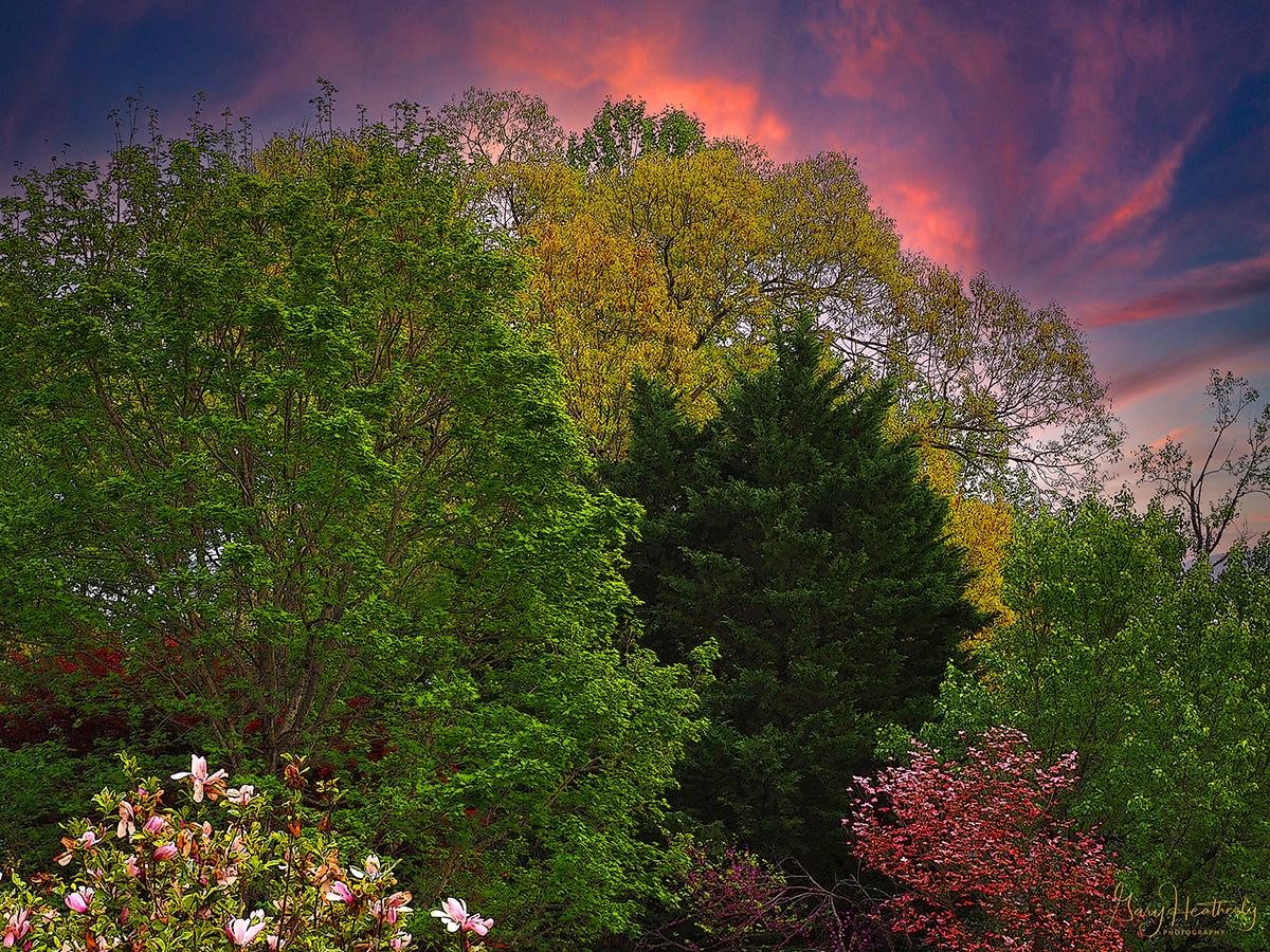 Gallery Category - Natural Landscape - Slide 1