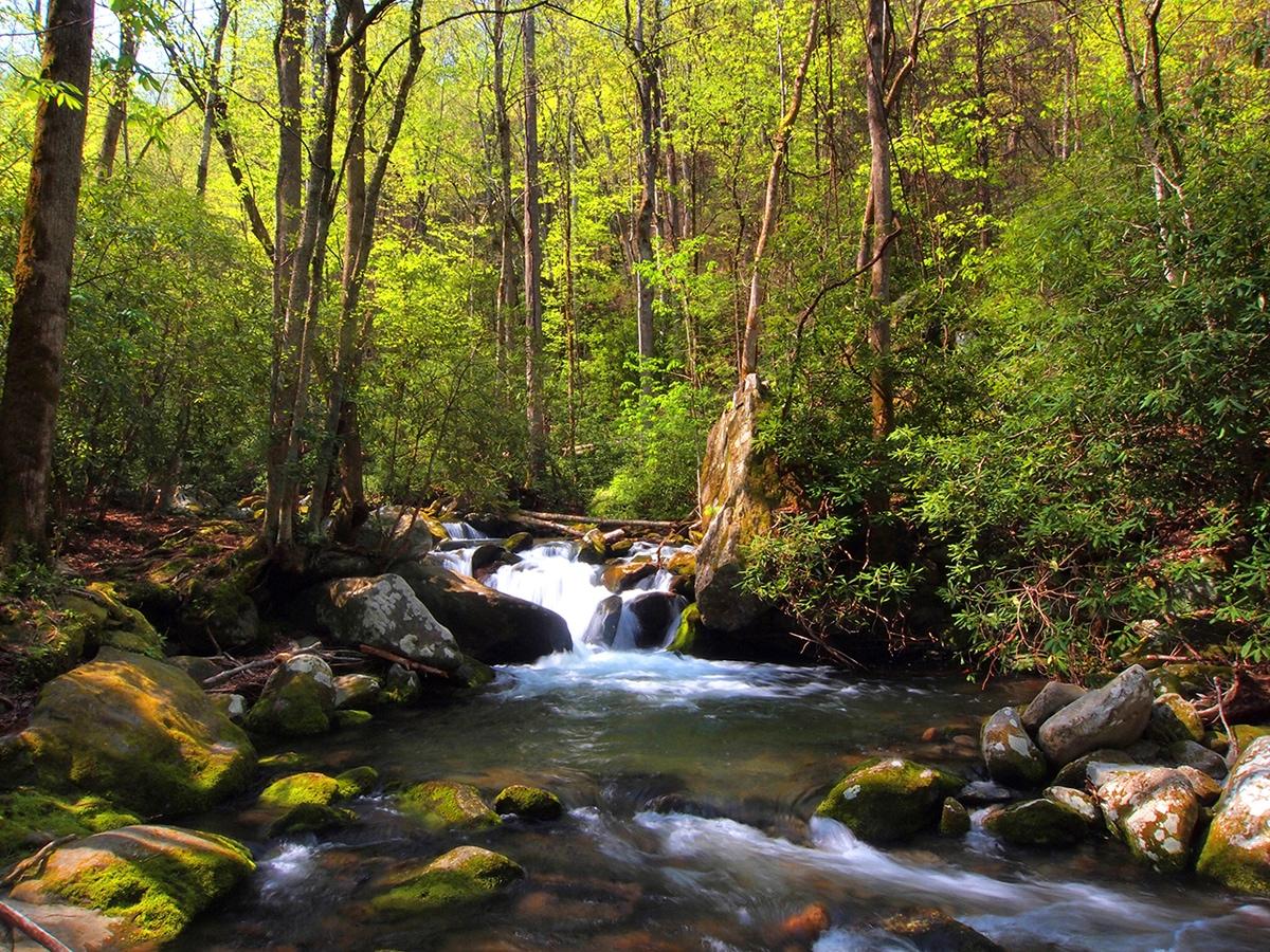 Gallery Category - Natural Landscape - Slide 3